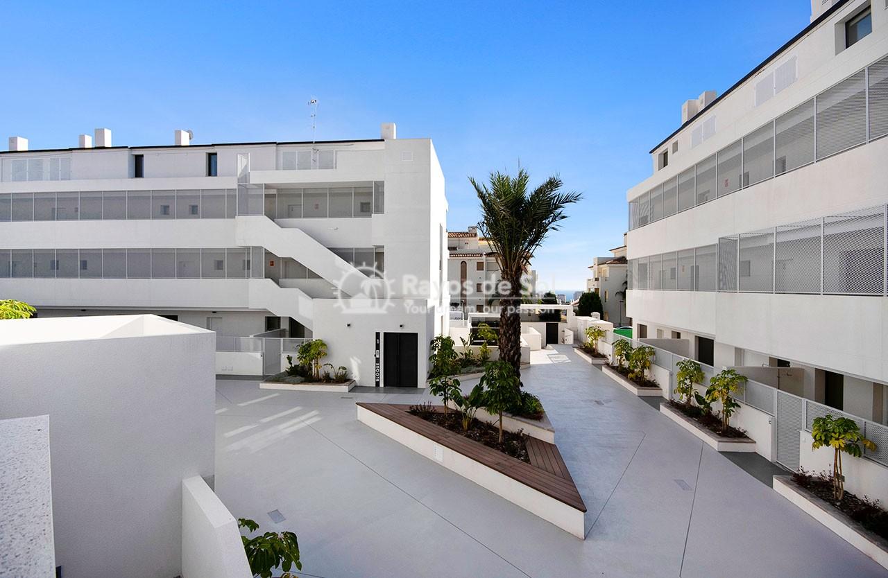 Apartment  in Finestrat, Costa Blanca (medviews2) - 50