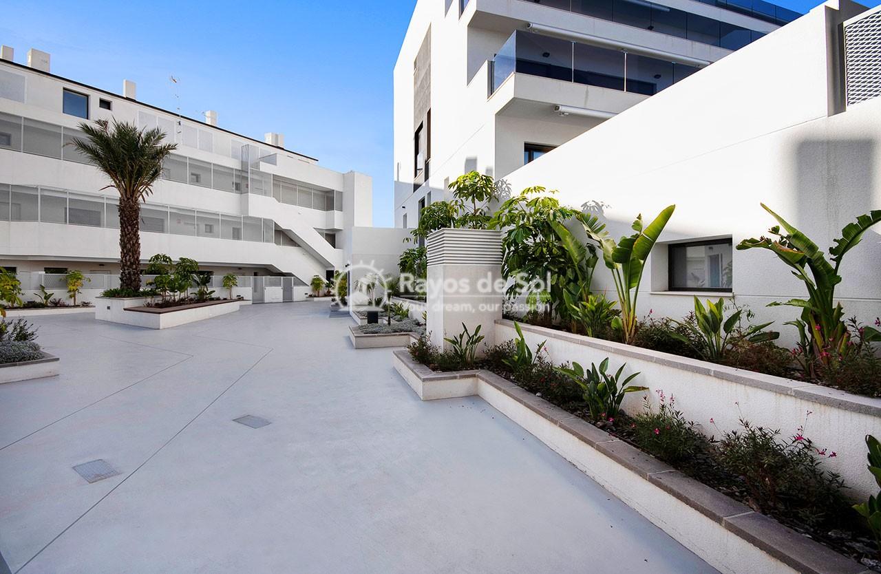 Apartment  in Finestrat, Costa Blanca (medviews2) - 51