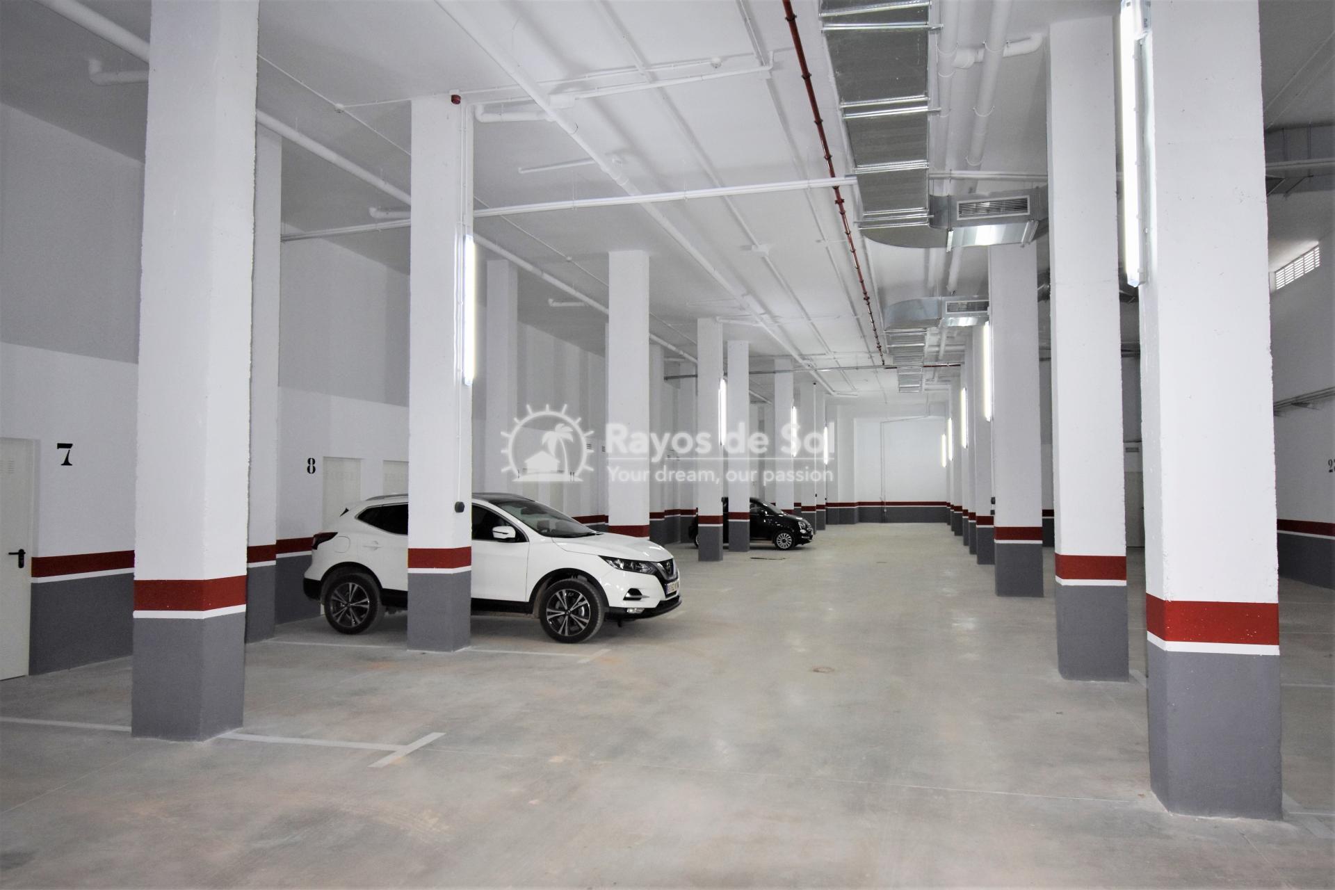 Apartment  in Los Dolses, Orihuela Costa, Costa Blanca (vgardens2-2d) - 14