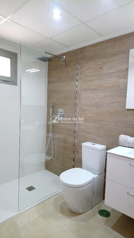 Apartment  in Villamartin, Orihuela Costa, Costa Blanca (vgardens2-gf-3d) - 7