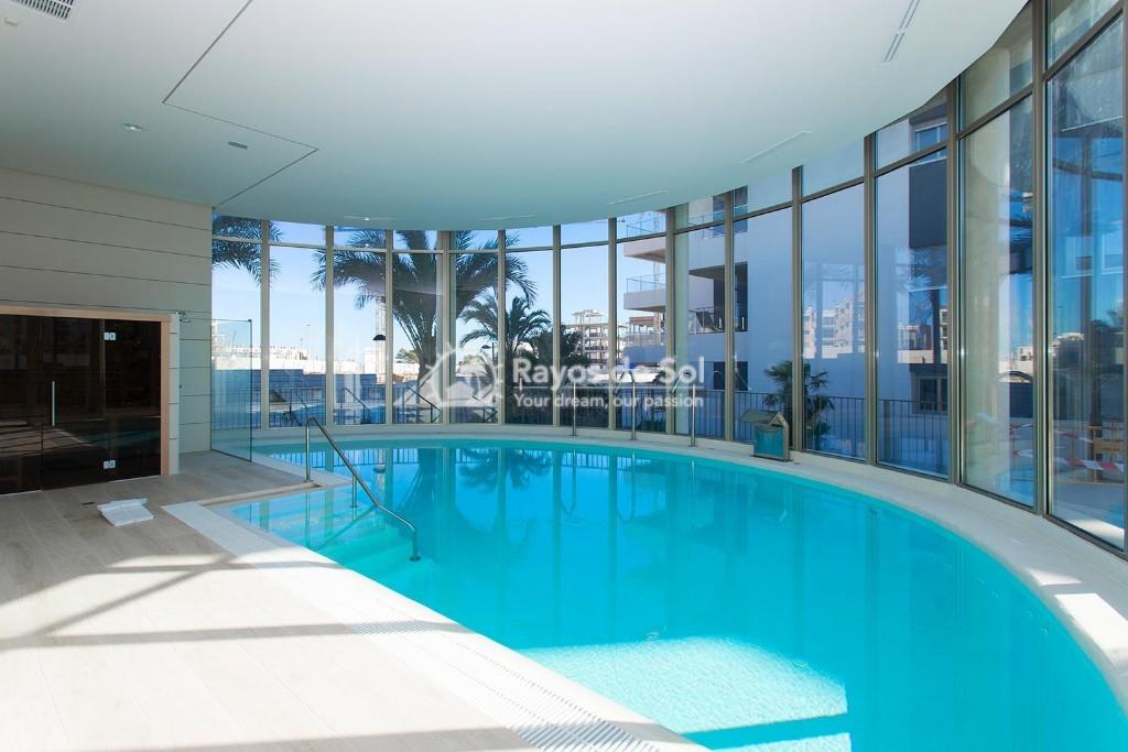 Apartment  in Villamartin, Orihuela Costa, Costa Blanca (greenh-ph-3d) - 21
