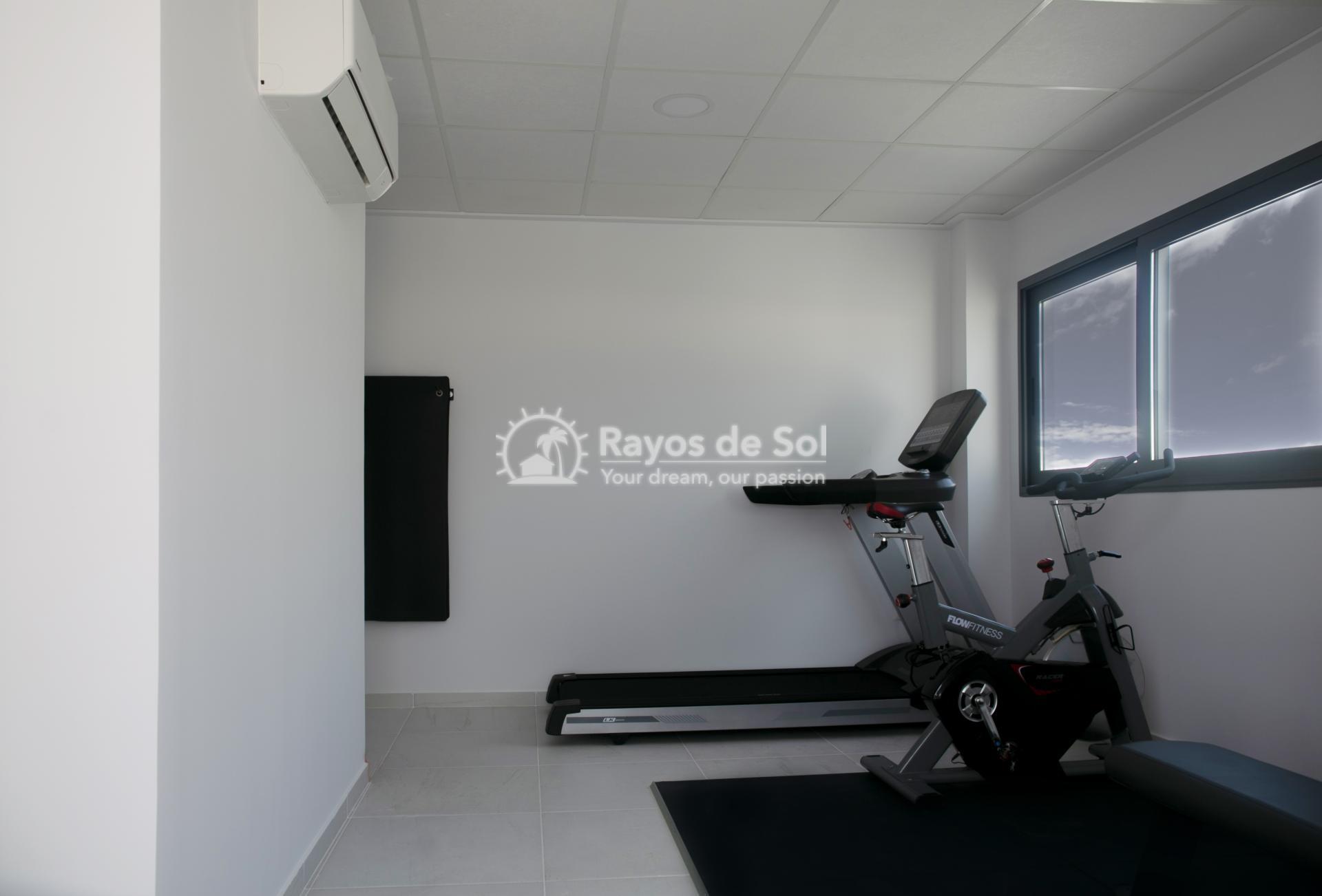 Apartment  in Guardamar del Segura, Costa Blanca (portalmar-tipo-2d) - 36