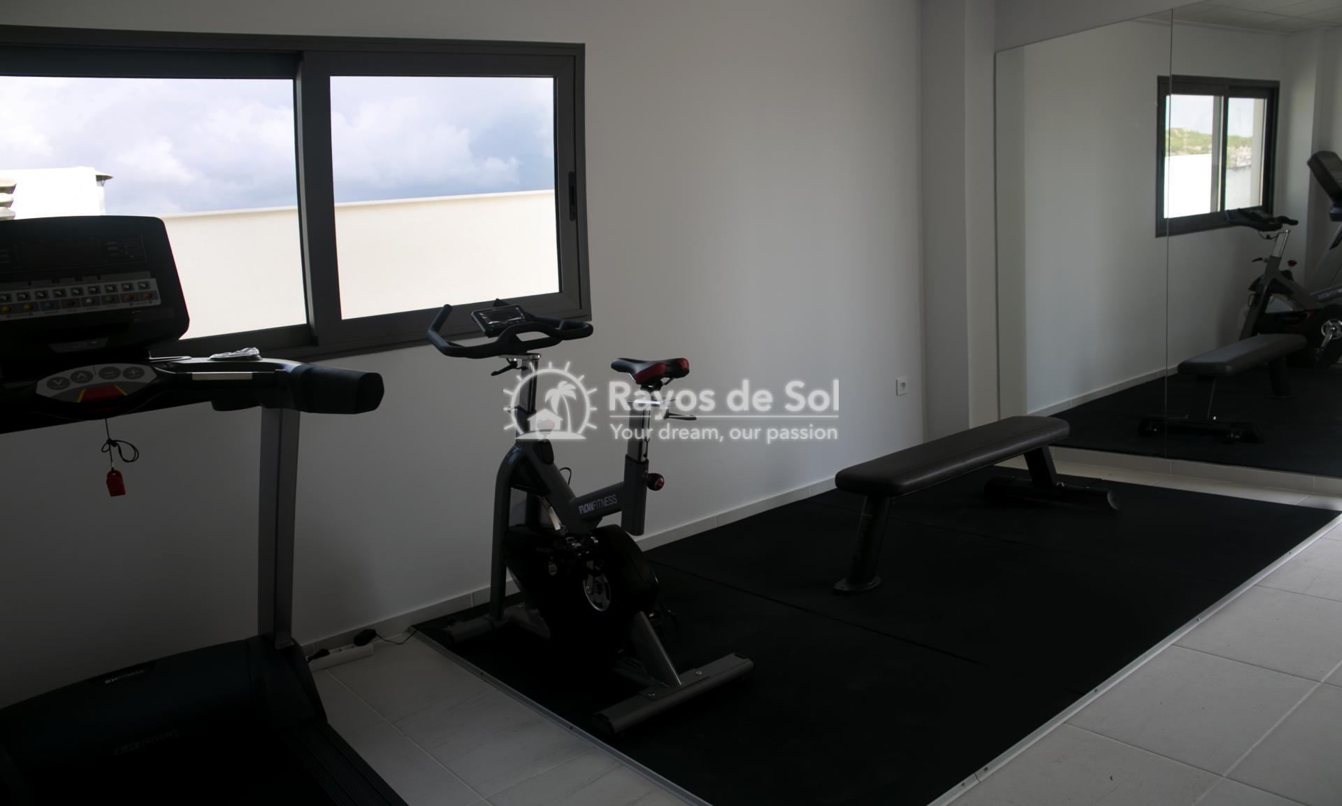 Apartment  in Guardamar del Segura, Costa Blanca (portalmar-tipo-2d) - 35