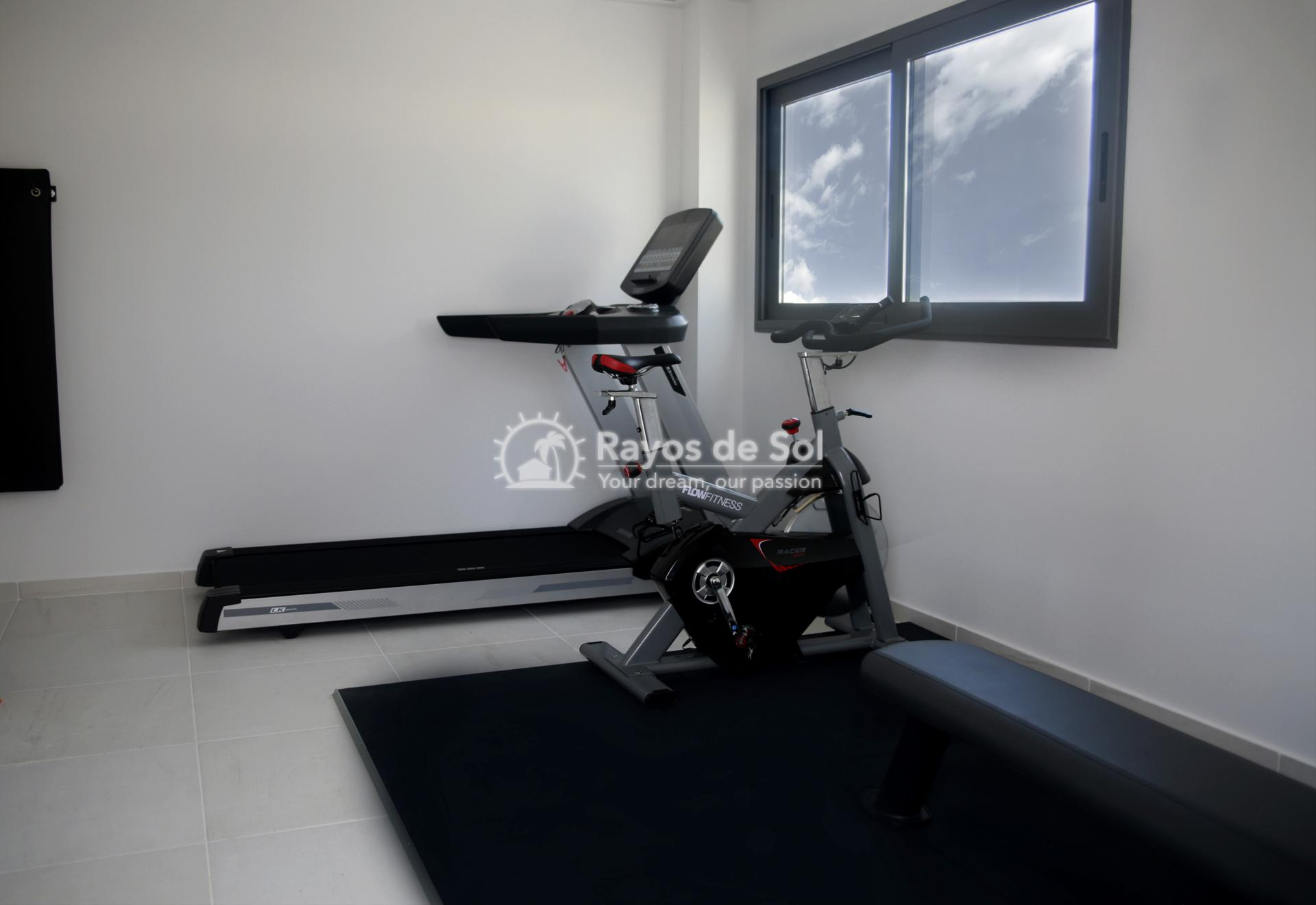 Apartment  in Guardamar del Segura, Costa Blanca (portalmar-tipo-2d) - 37