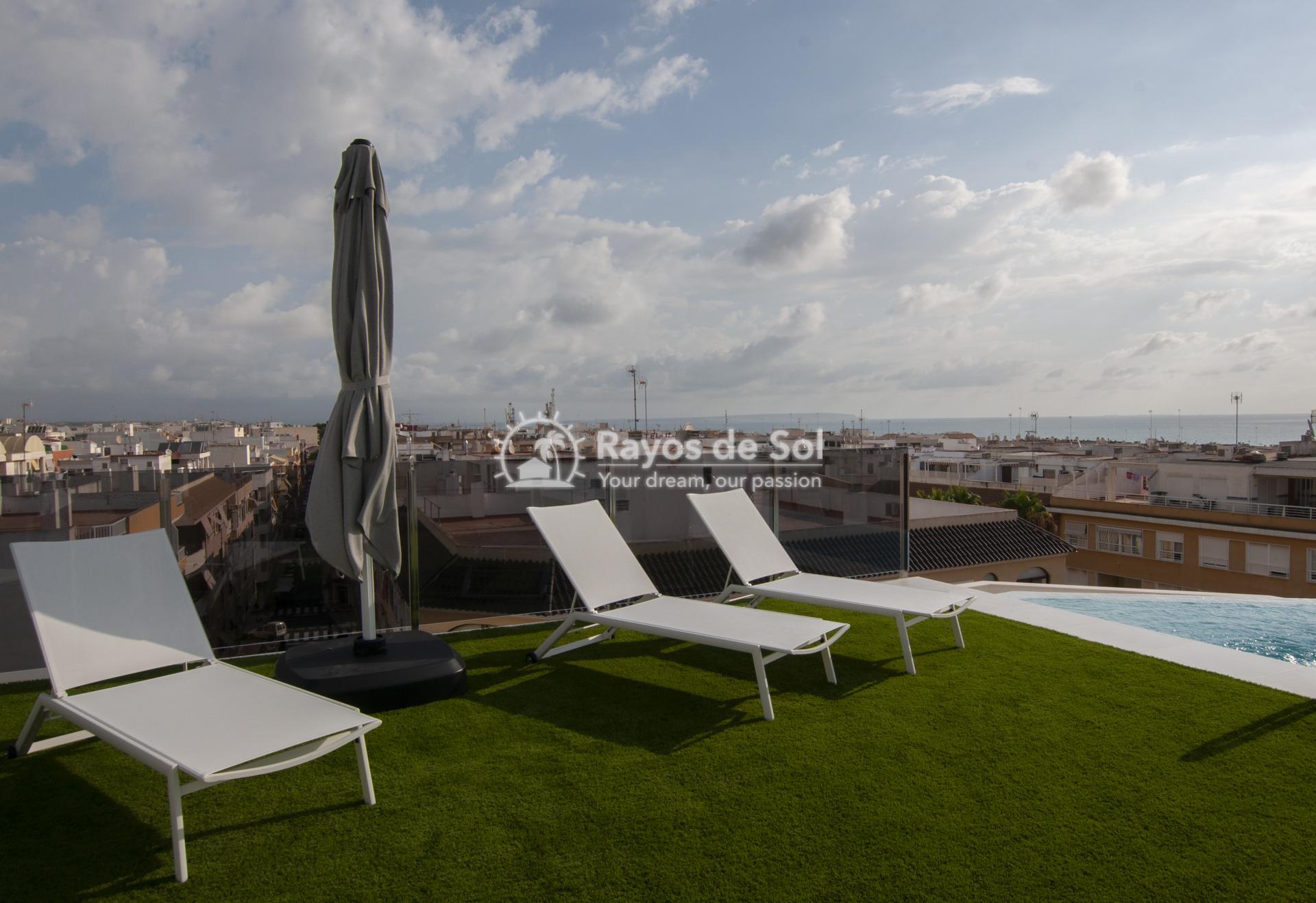 Apartment  in Guardamar del Segura, Costa Blanca (portalmar-tipo-2d) - 30