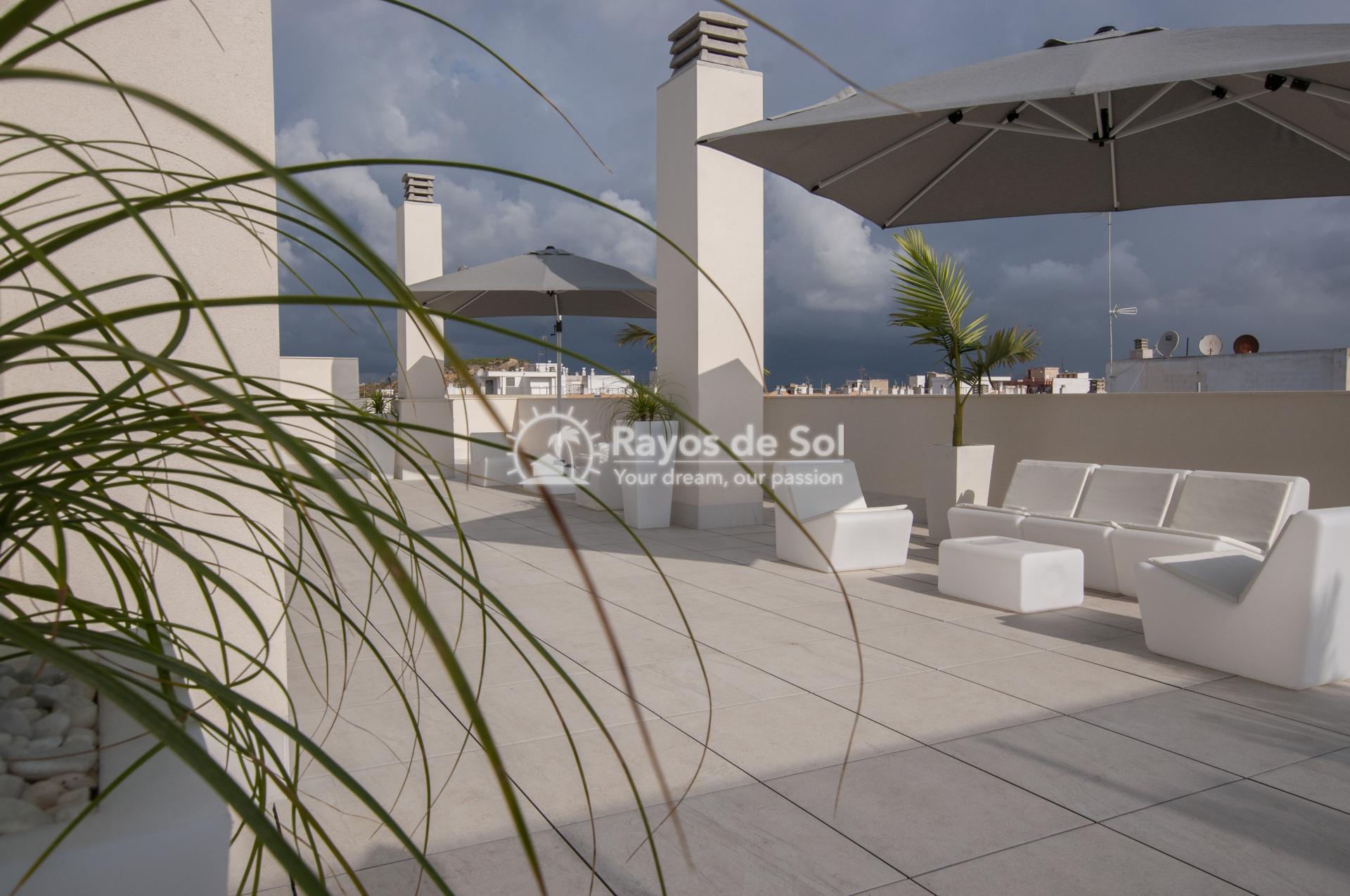 Apartment  in Guardamar del Segura, Costa Blanca (portalmar-tipo-3d) - 53