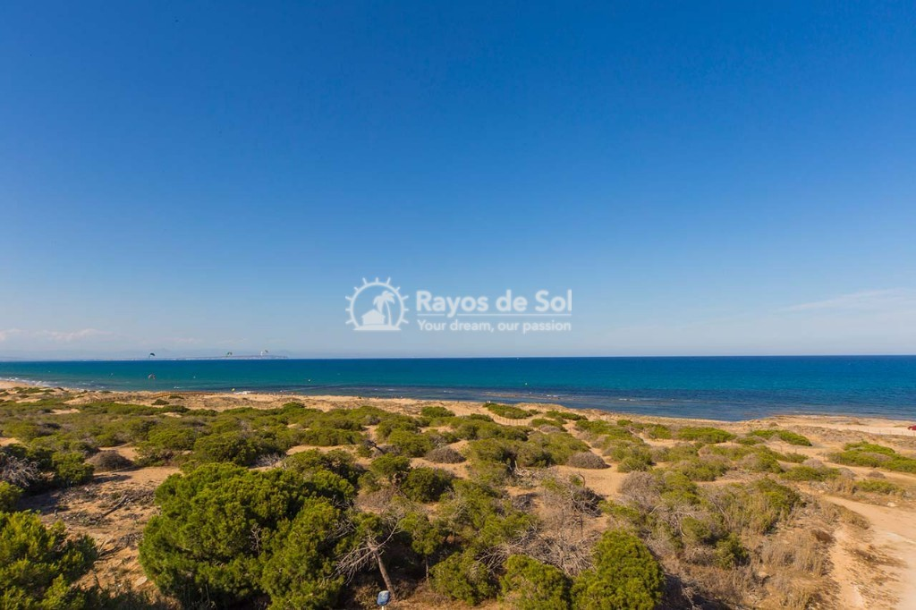 Detached villa  in La Marina, Costa Blanca (npinet15-3d-villa) - 16
