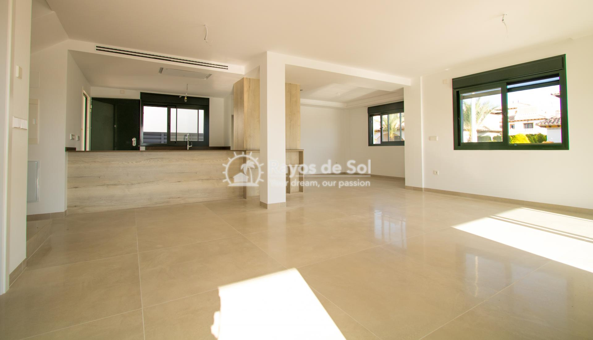 Detached villa  in La Marina, Costa Blanca (npinet15-3d-villa) - 4