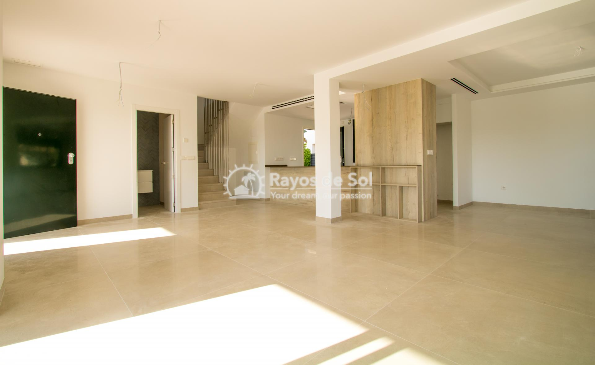 Detached villa  in La Marina, Costa Blanca (npinet15-3d-villa) - 2