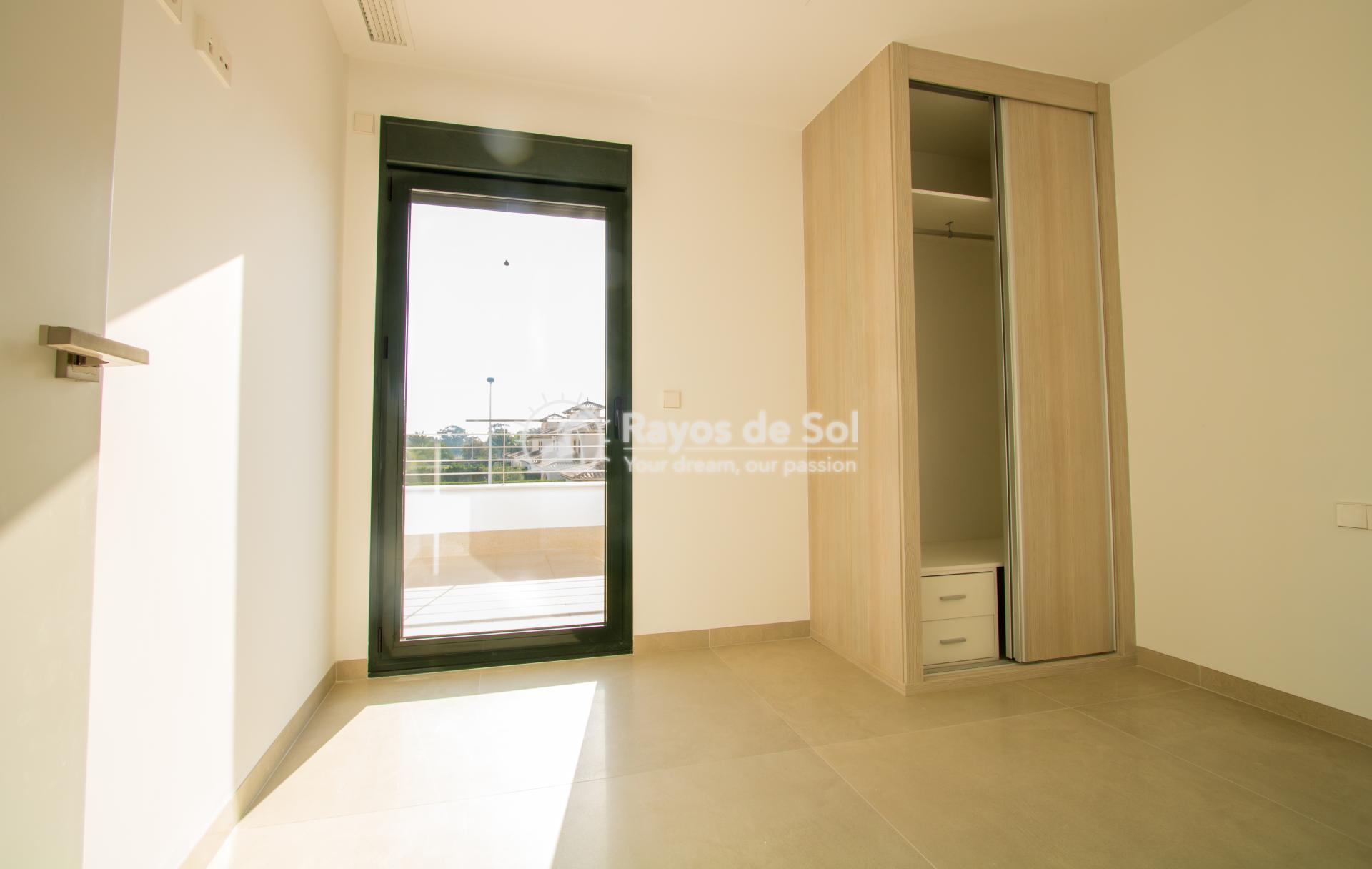 Detached villa  in La Marina, Costa Blanca (npinet15-3d-villa) - 5