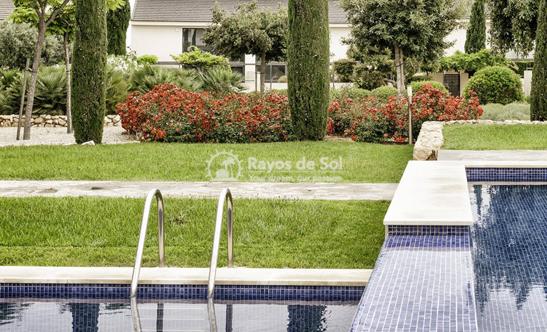 Apartment  in Los Dolses, Orihuela Costa, Costa Blanca (montesolana-tipo-2d) - 34