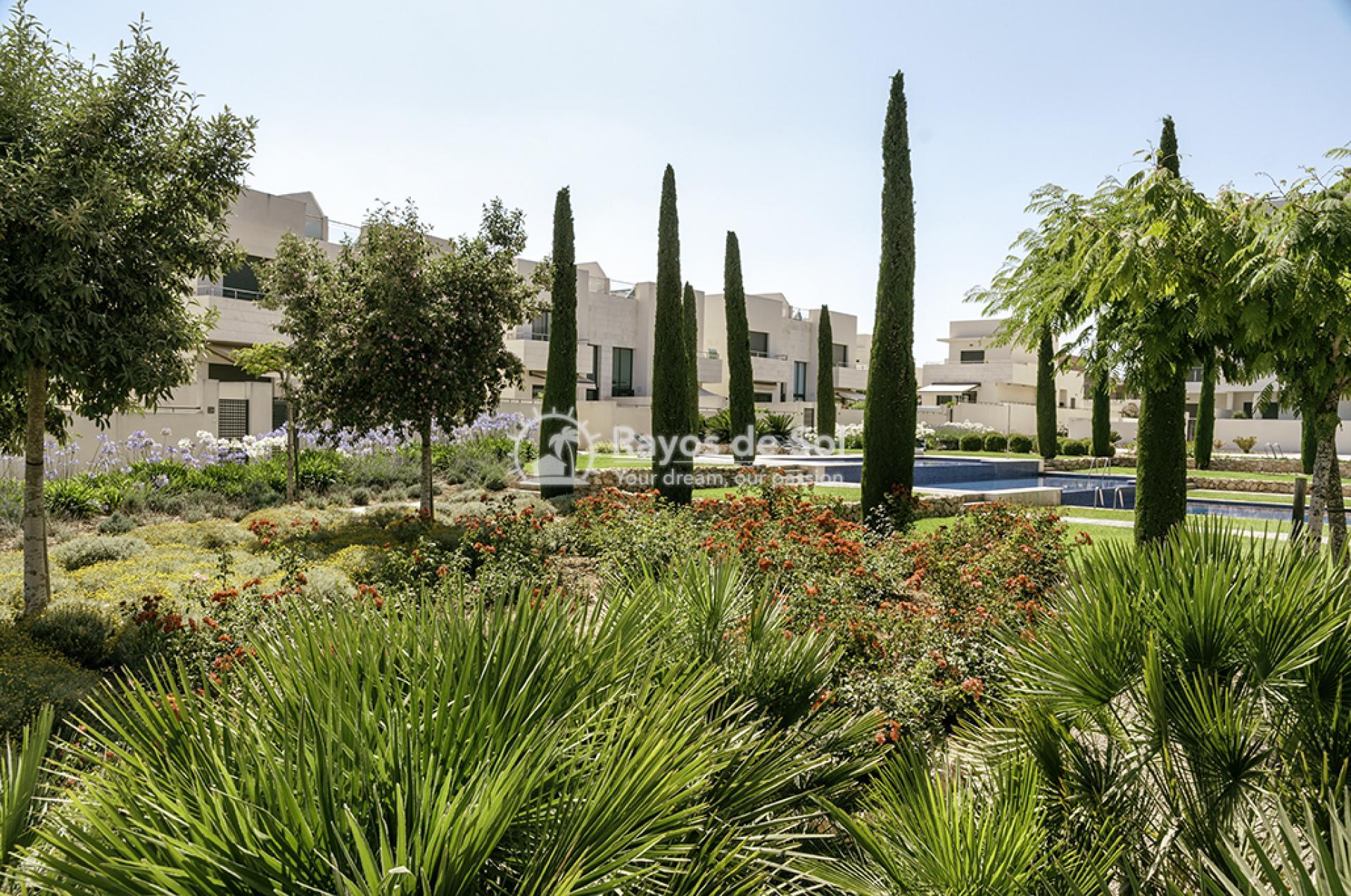 Penthouse  in Los Dolses, Orihuela Costa, Costa Blanca (montesolana-ph-2d) - 38