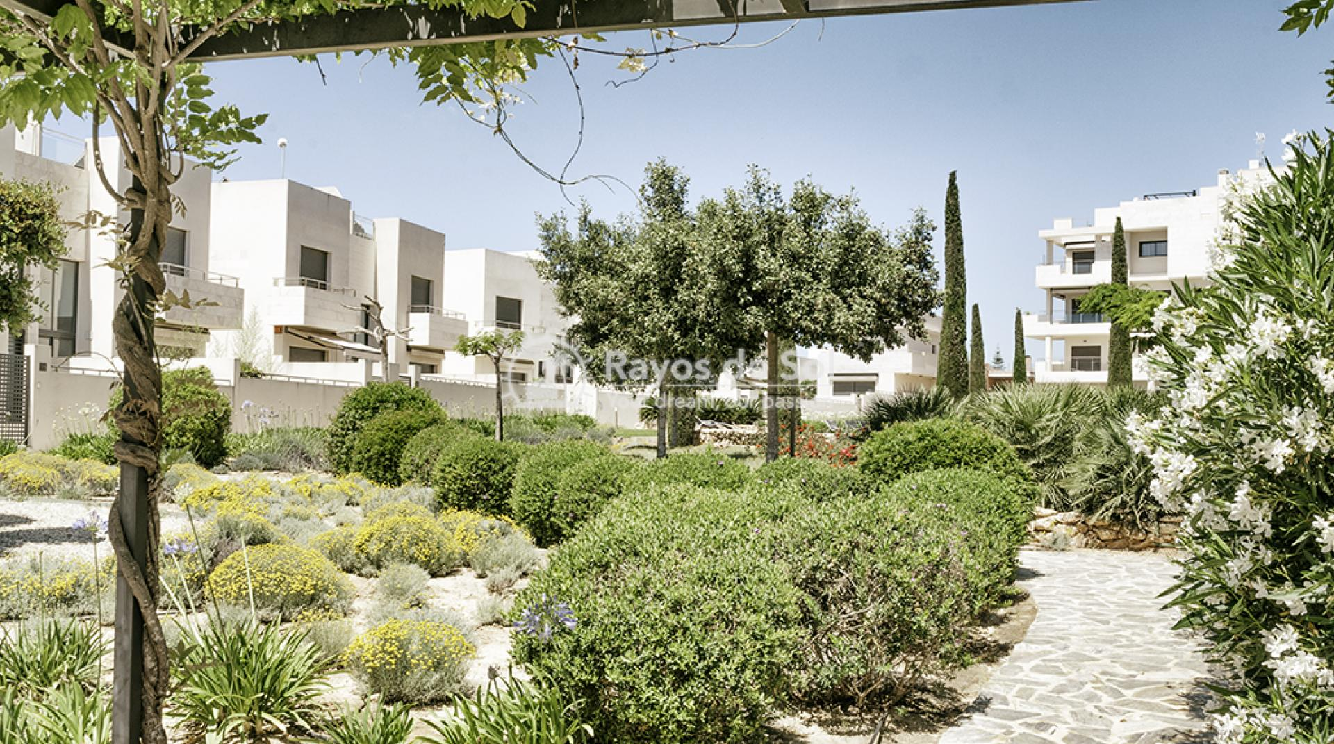 Penthouse  in Los Dolses, Orihuela Costa, Costa Blanca (montesolana-ph-3d) - 24