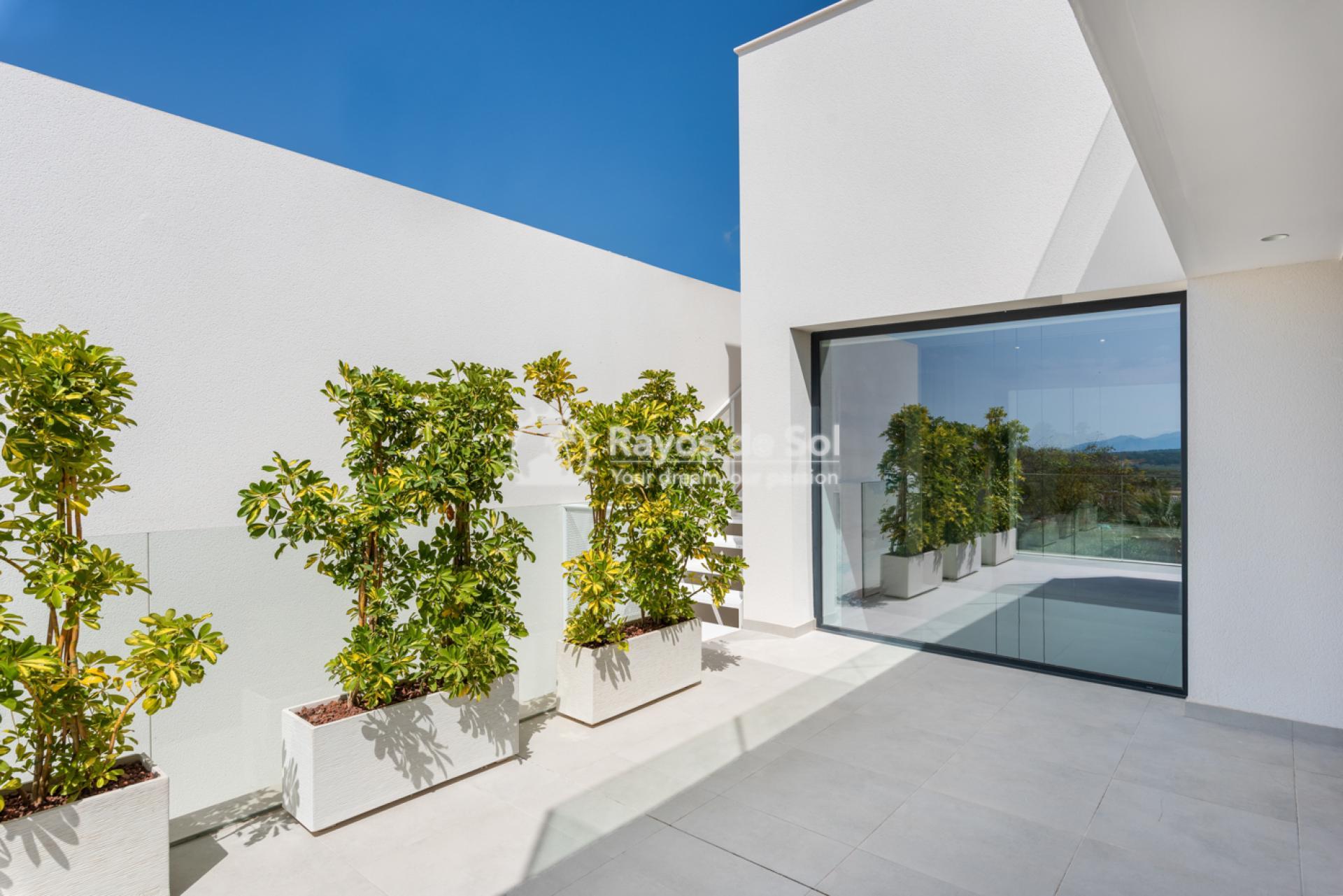 Villa  in Benijofar, Costa Blanca (venecia+bsm) - 26