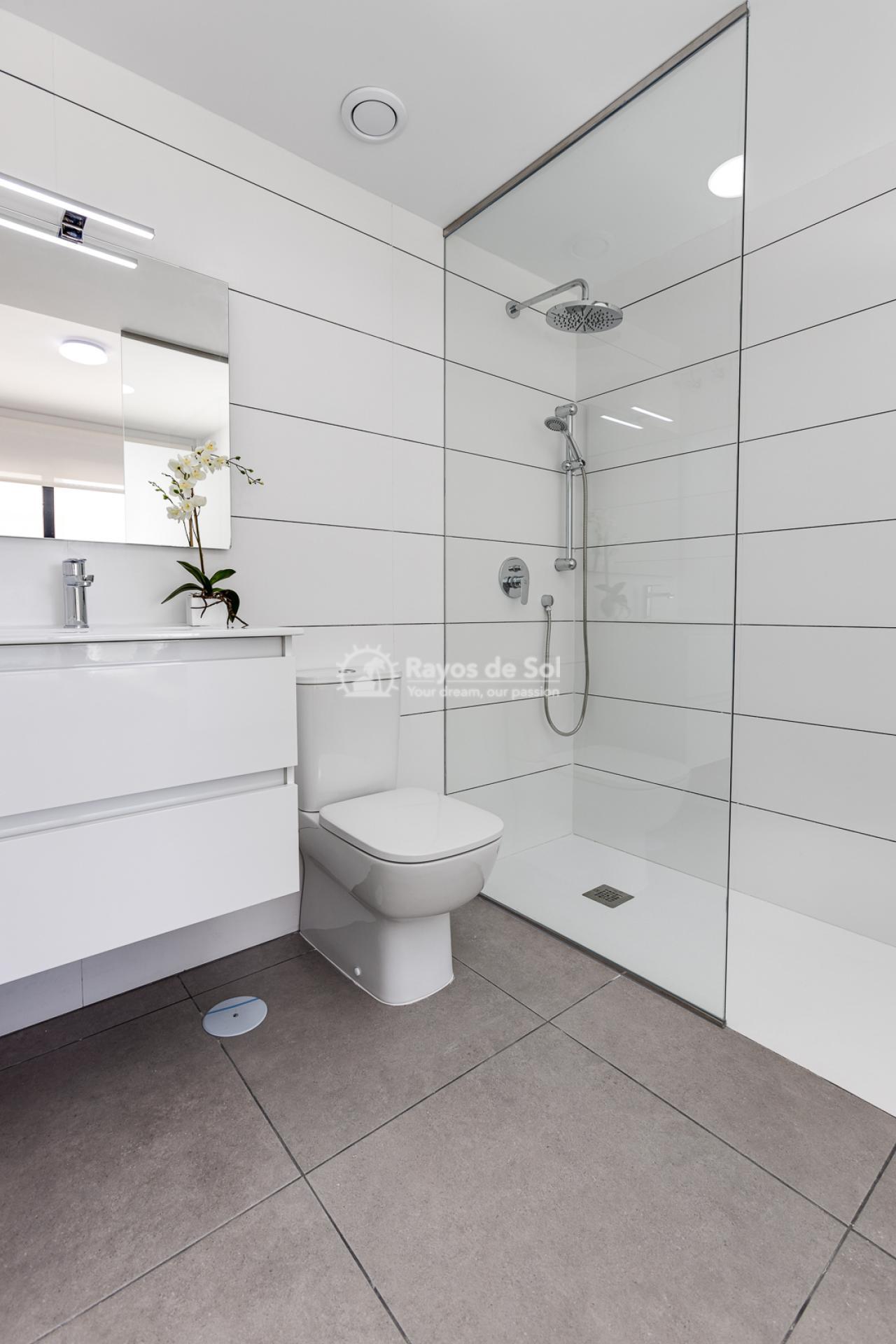 Apartment  in Villamartin, Orihuela Costa, Costa Blanca (valentino2-gf) - 23