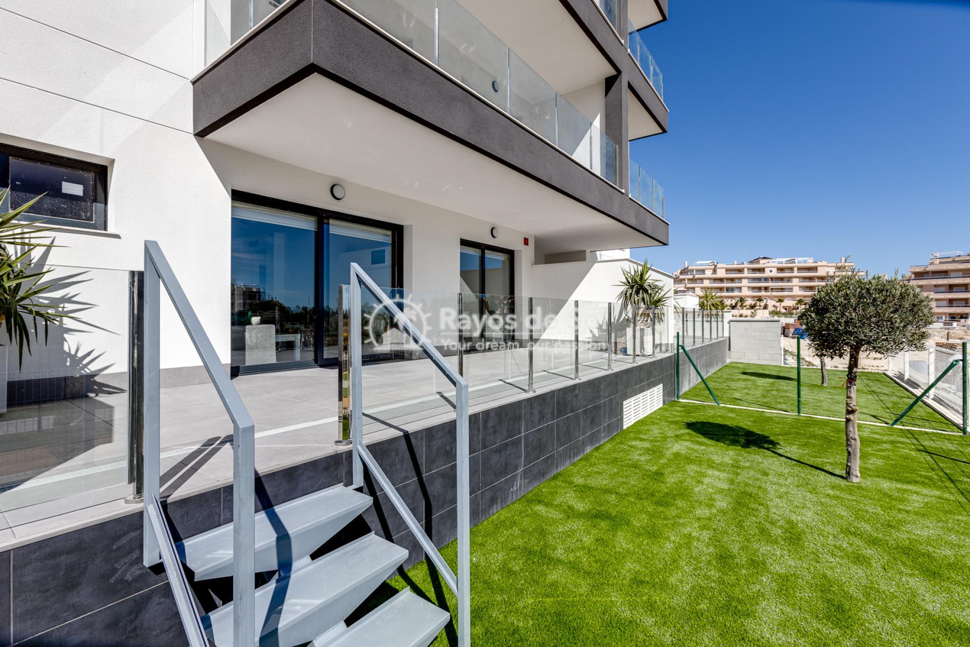 Apartment  in Villamartin, Orihuela Costa, Costa Blanca (valentino2-gf) - 39