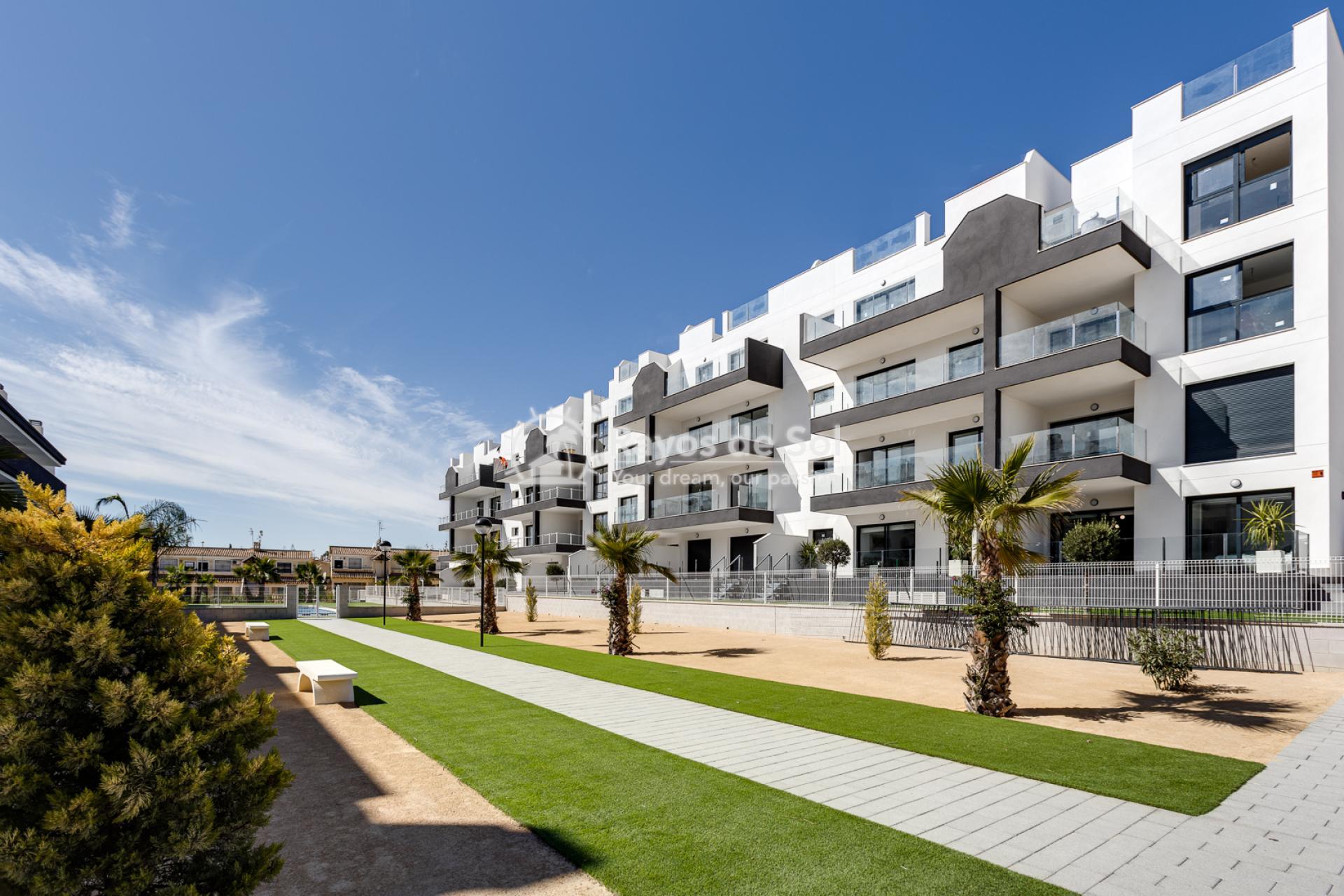 Apartment  in Villamartin, Orihuela Costa, Costa Blanca (valentino2-gf) - 2