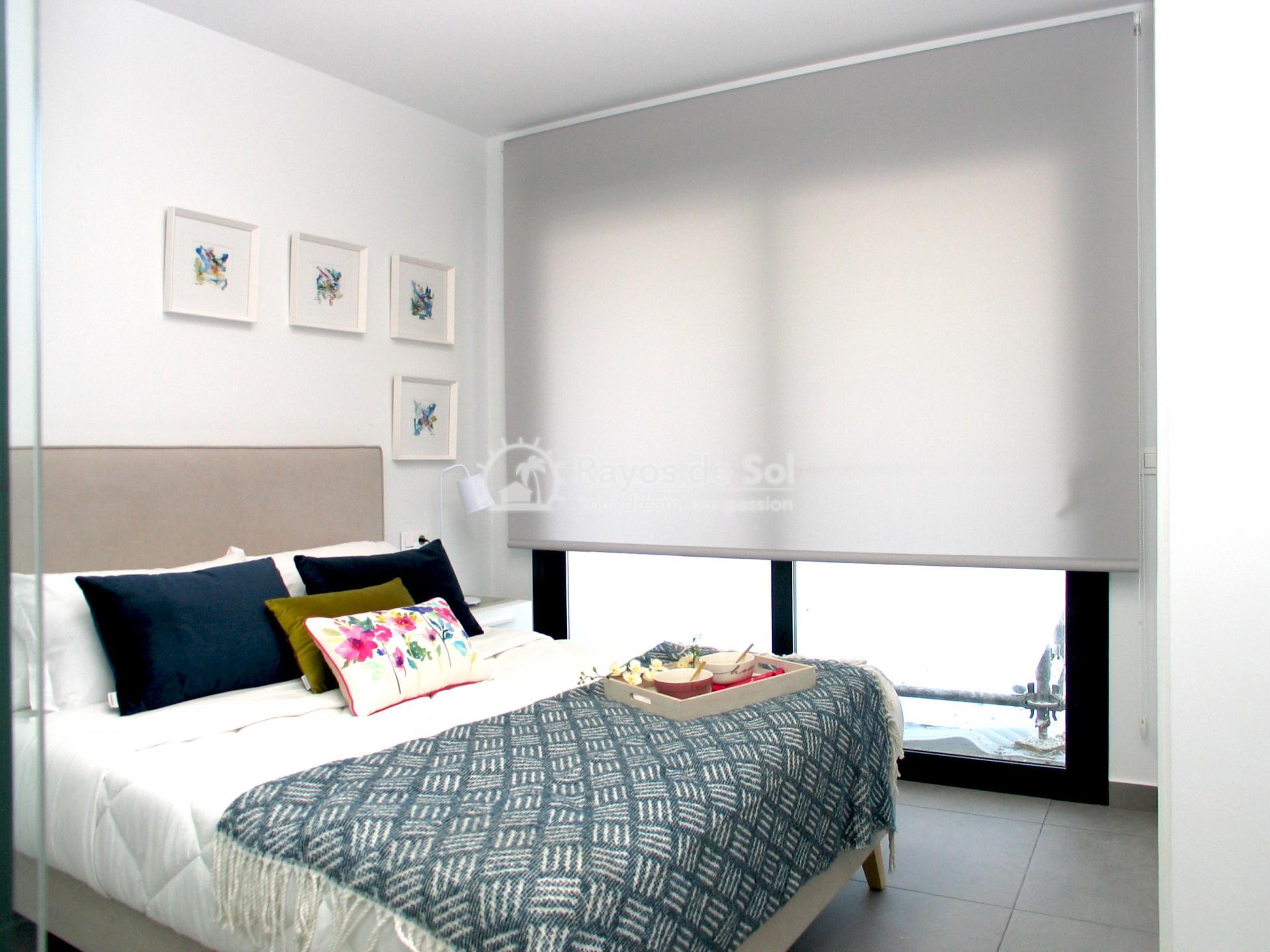 Apartment  in Villamartin, Orihuela Costa, Costa Blanca (valentino2) - 19