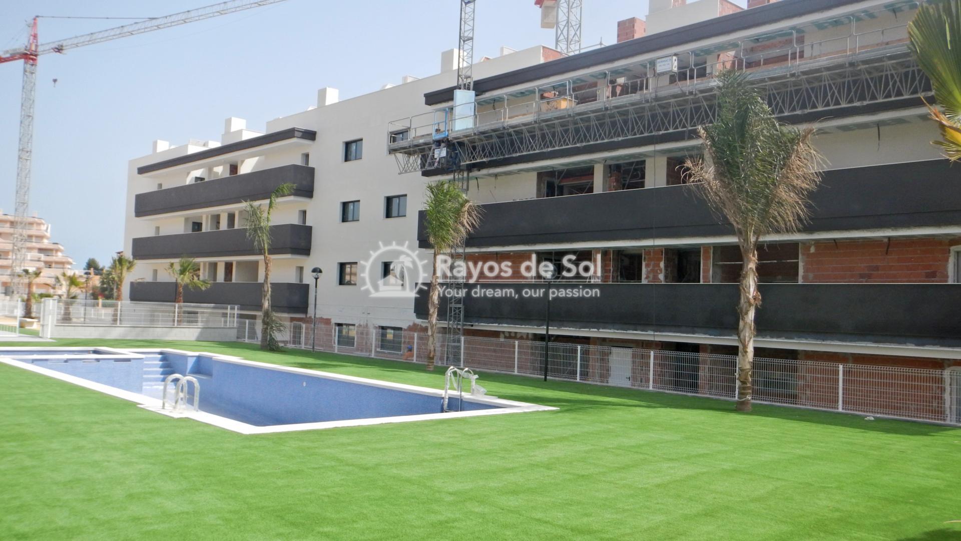 Apartment  in Villamartin, Orihuela Costa, Costa Blanca (valentino2) - 33