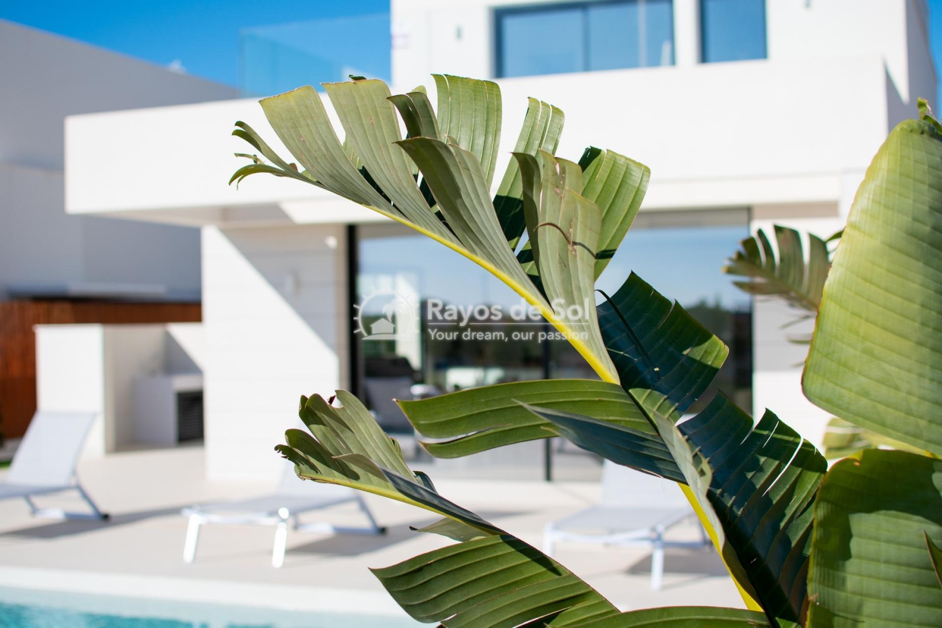 Villa  in Los Montesinos, Costa Blanca (montesinosv-4d) - 22