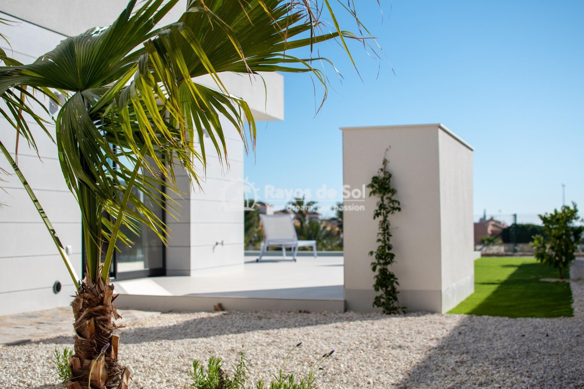 Villa  in Los Montesinos, Costa Blanca (montesinosv-4d) - 19