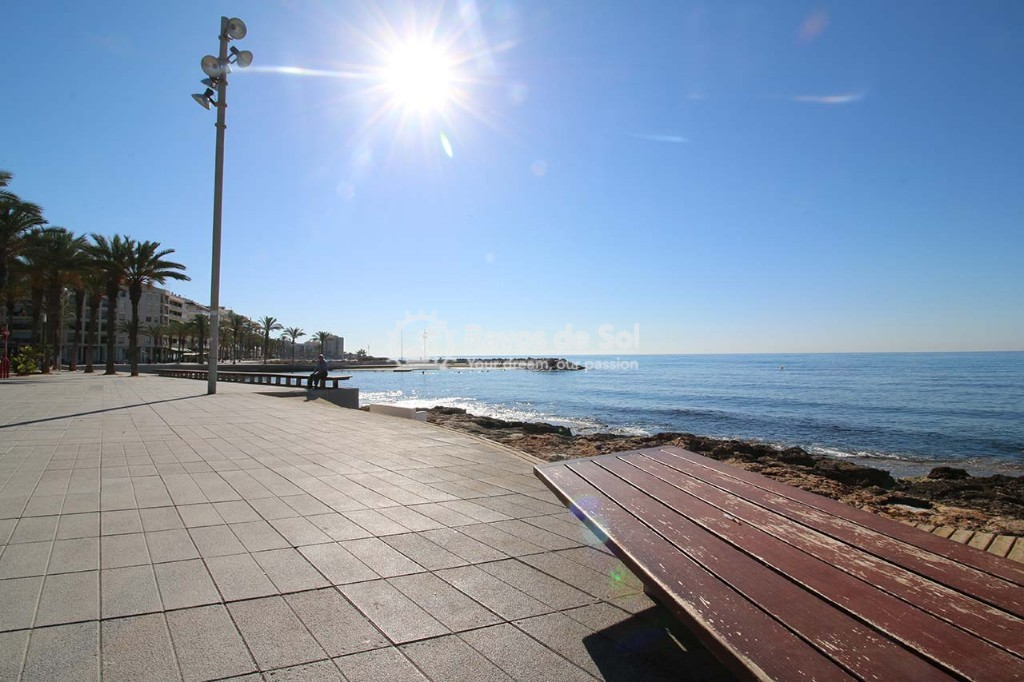 Apartment  in Torrevieja, Costa Blanca (alegria12-2d) - 15