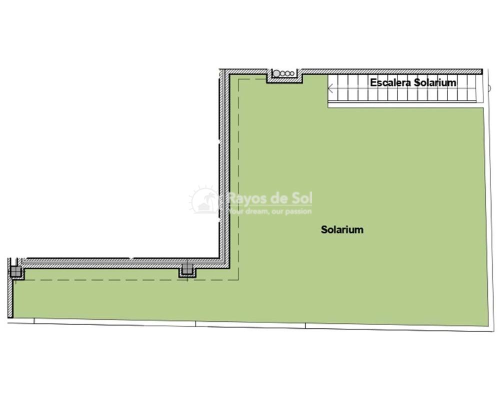 Penthouse  in Torrevieja, Costa Blanca (alegria14-ph-3d) - 22