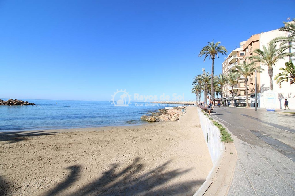 Penthouse  in Torrevieja, Costa Blanca (alegria14-ph-3d) - 28