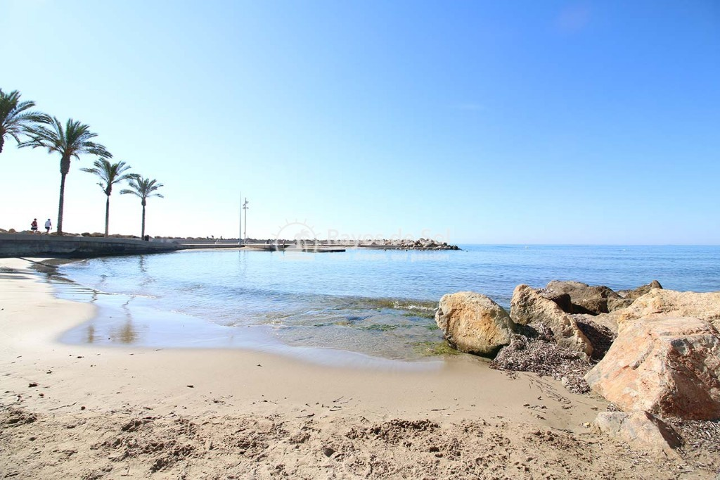 Penthouse  in Torrevieja, Costa Blanca (alegria14-ph-2d) - 28