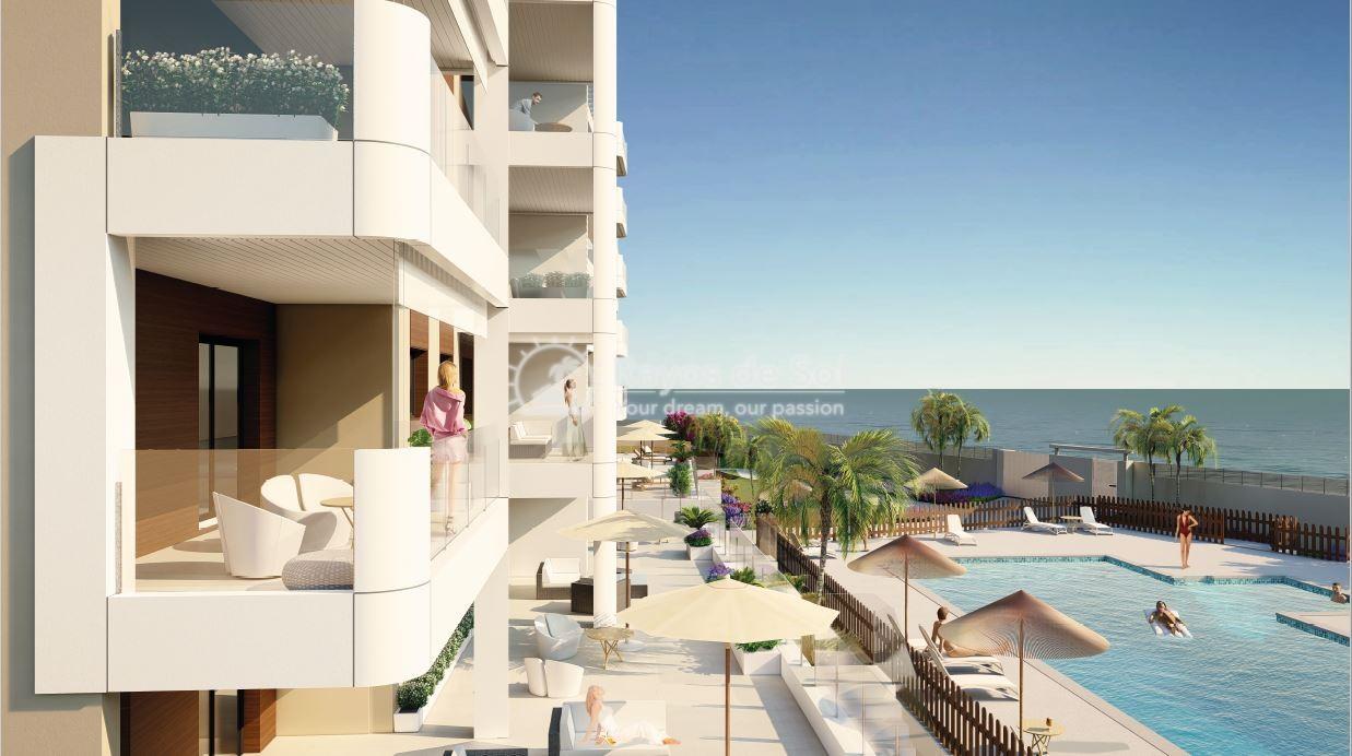 Apartment  in Torre de la Horadada, Pilar de la Horadada, Costa Blanca (pintoral-gf-2d) - 3