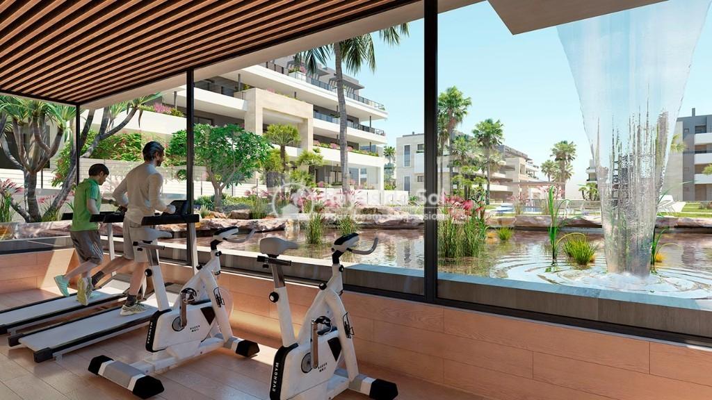 Apartment  in Playa Flamenca, Orihuela Costa, Costa Blanca (flamencav-3d) - 8