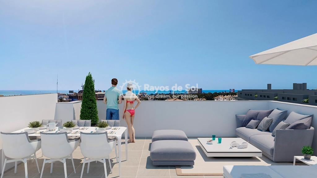 Apartment  in Playa Flamenca, Orihuela Costa, Costa Blanca (flamencav-3d) - 11