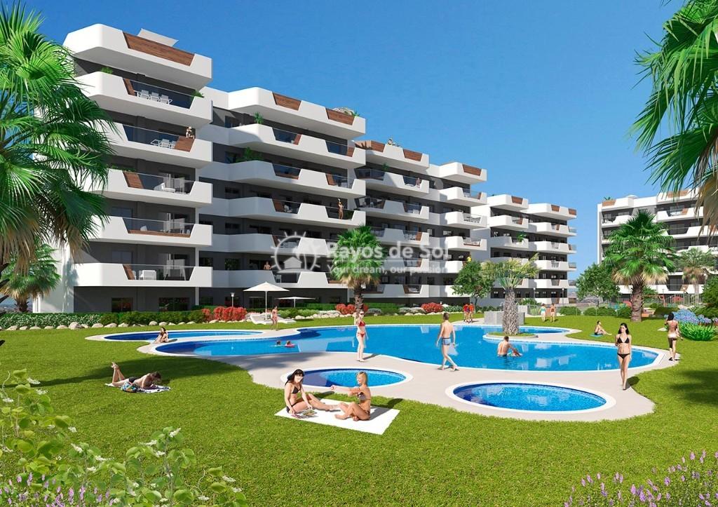Apartment  in Los Arenales Del Sol, Costa Blanca (arenalesp9-gf-2d) - 3