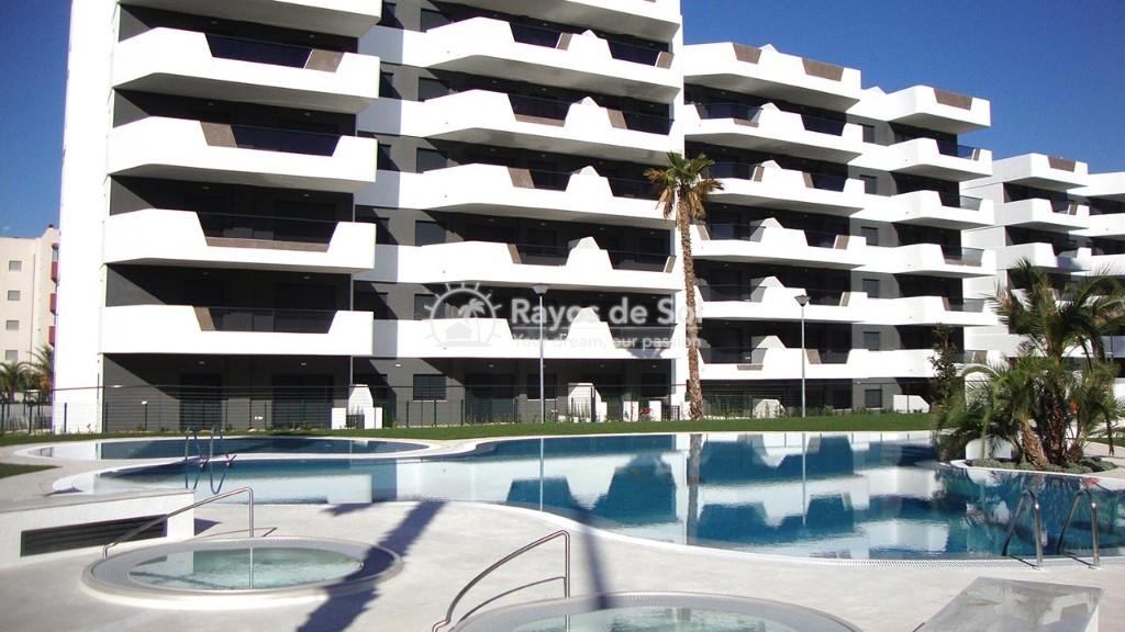 Apartment  in Los Arenales Del Sol, Costa Blanca (arenalesp9-gf-2d) - 11