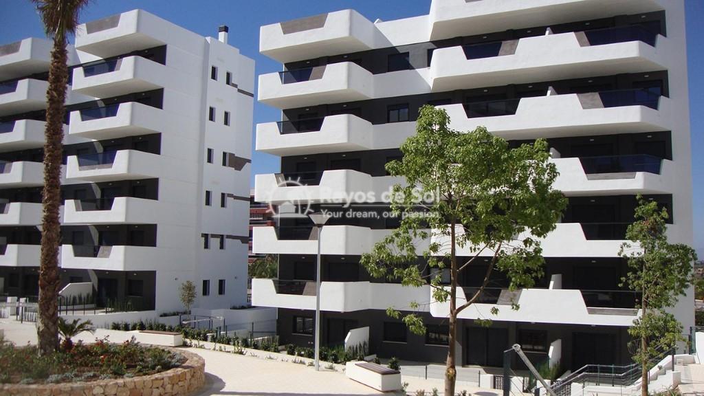 Apartment  in Los Arenales Del Sol, Costa Blanca (arenalesp9-gf-2d) - 12