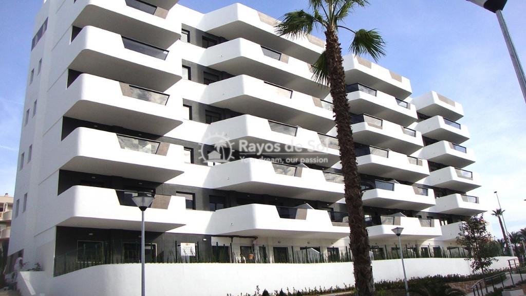 Apartment  in Los Arenales Del Sol, Costa Blanca (arenalesp9-gf-2d) - 14
