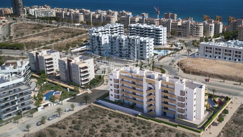 Penthouse  in Los Arenales Del Sol, Costa Blanca (arenalesp10-ph-2d) - 2