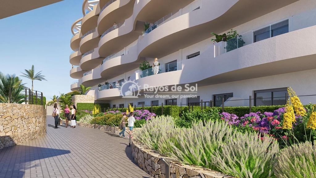 Penthouse  in Los Arenales Del Sol, Costa Blanca (arenalesp10-ph-2d) - 9