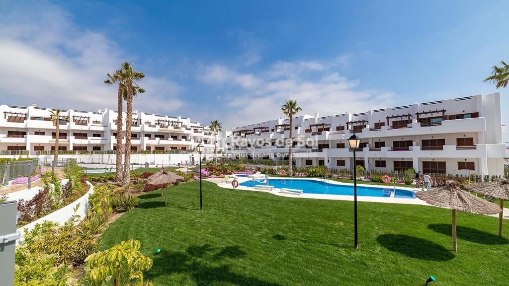 Apartment in San Juan Terreros, San Juan de los Terreros, Costa Almería (marpulpiap-gf-2d) - 4