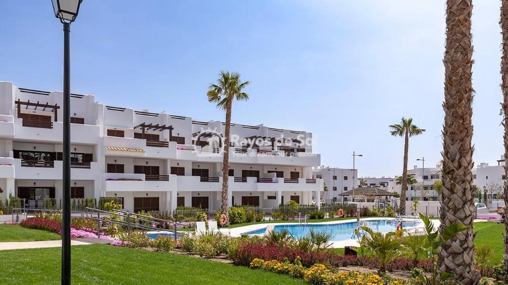 Apartment in San Juan Terreros, San Juan de los Terreros, Costa Almería (marpulpiap-gf-2d) - 11
