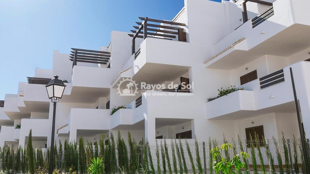 Apartment in San Juan Terreros, San Juan de los Terreros, Costa Almería (marpulpiap-ph-2d) - 16