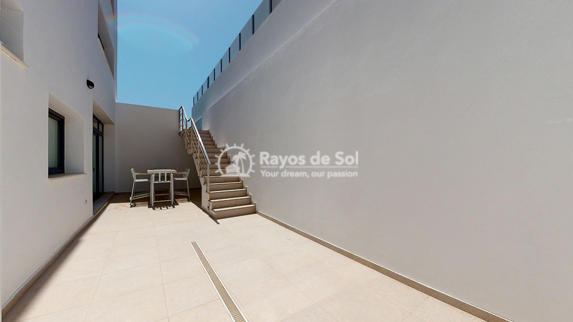 Villa  in Finestrat, Costa Blanca (panoramicb-villa) - 36