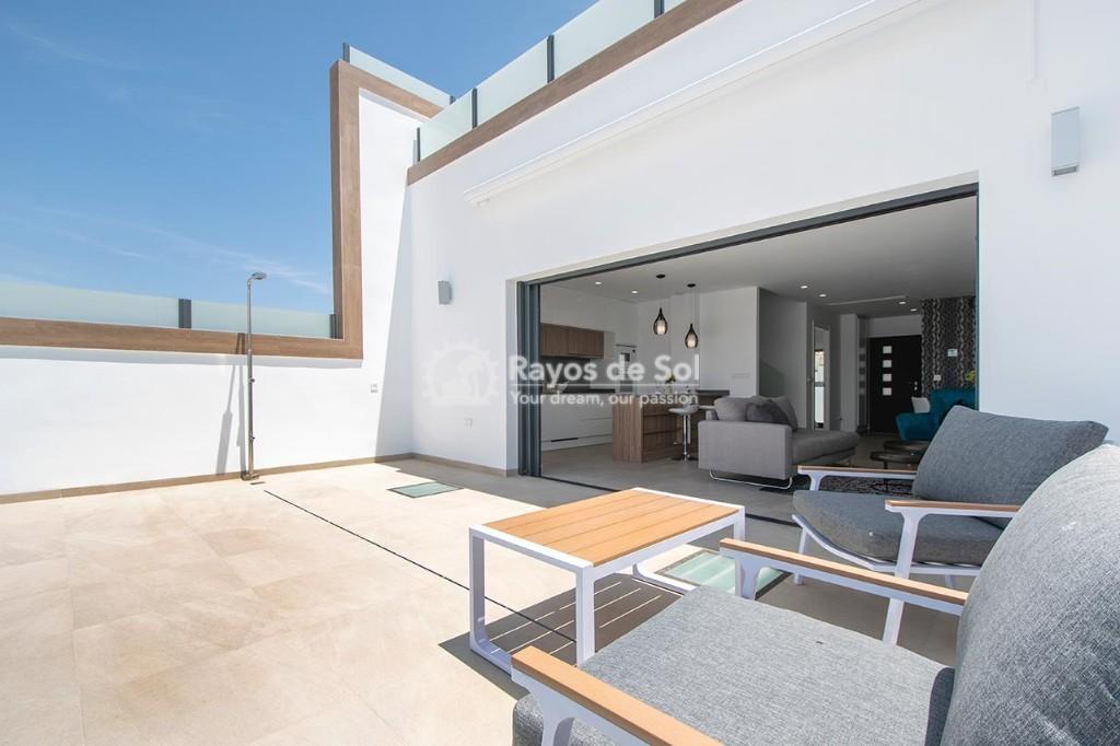 Villa  in Benijofar, Costa Blanca (laalameda-villa) - 32