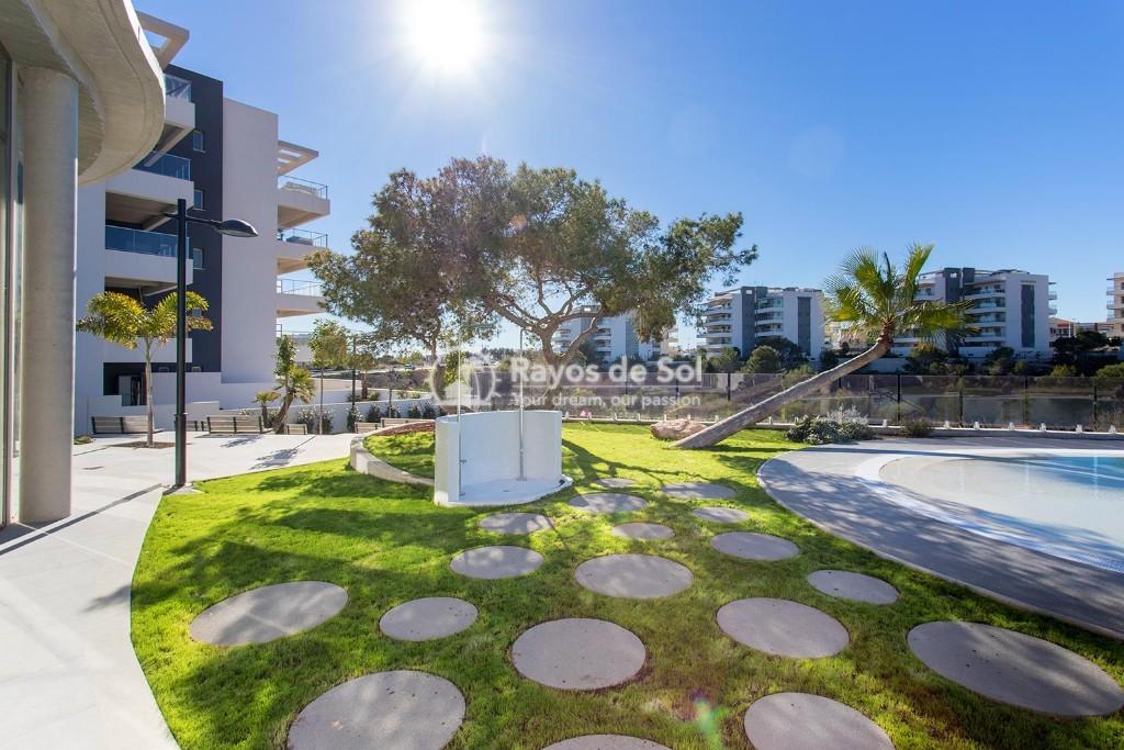 Apartment  in Orihuela Costa, Costa Blanca (greenh-gf-2d) - 13
