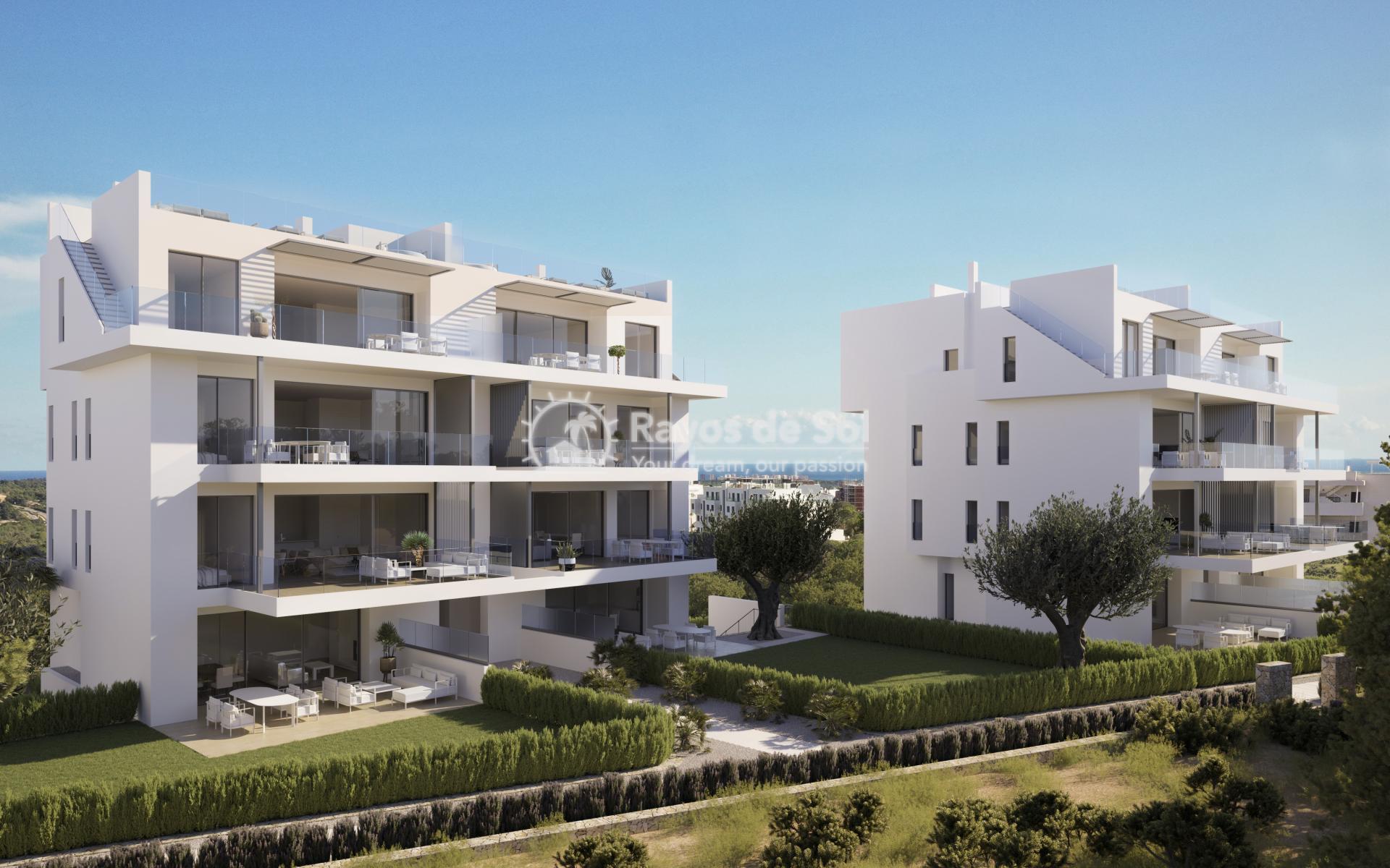 Penthouse  in Las Colinas, Orihuela Costa, Costa Blanca (nisperoap-ph-2d) - 11