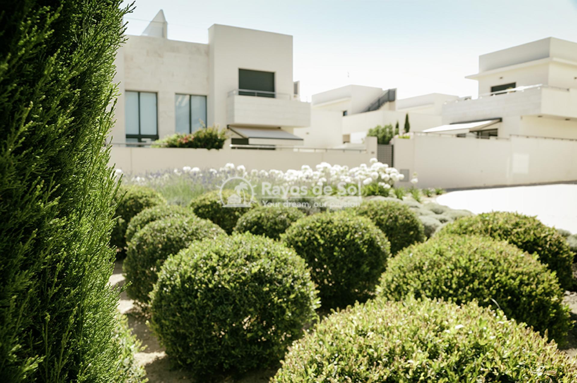 Apartment  in Los Dolses, Orihuela Costa, Costa Blanca (montesolana-tipo-3d) - 16