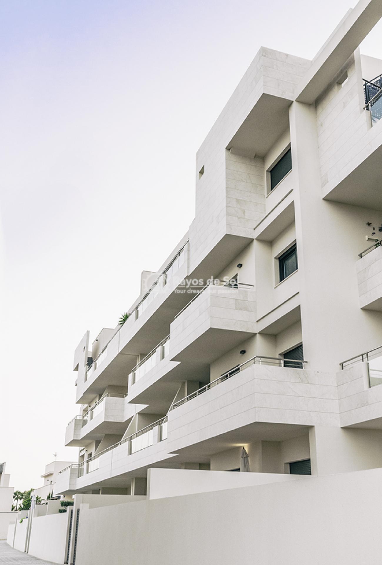 Apartment  in Los Dolses, Orihuela Costa, Costa Blanca (montesolana-tipo-3d) - 21