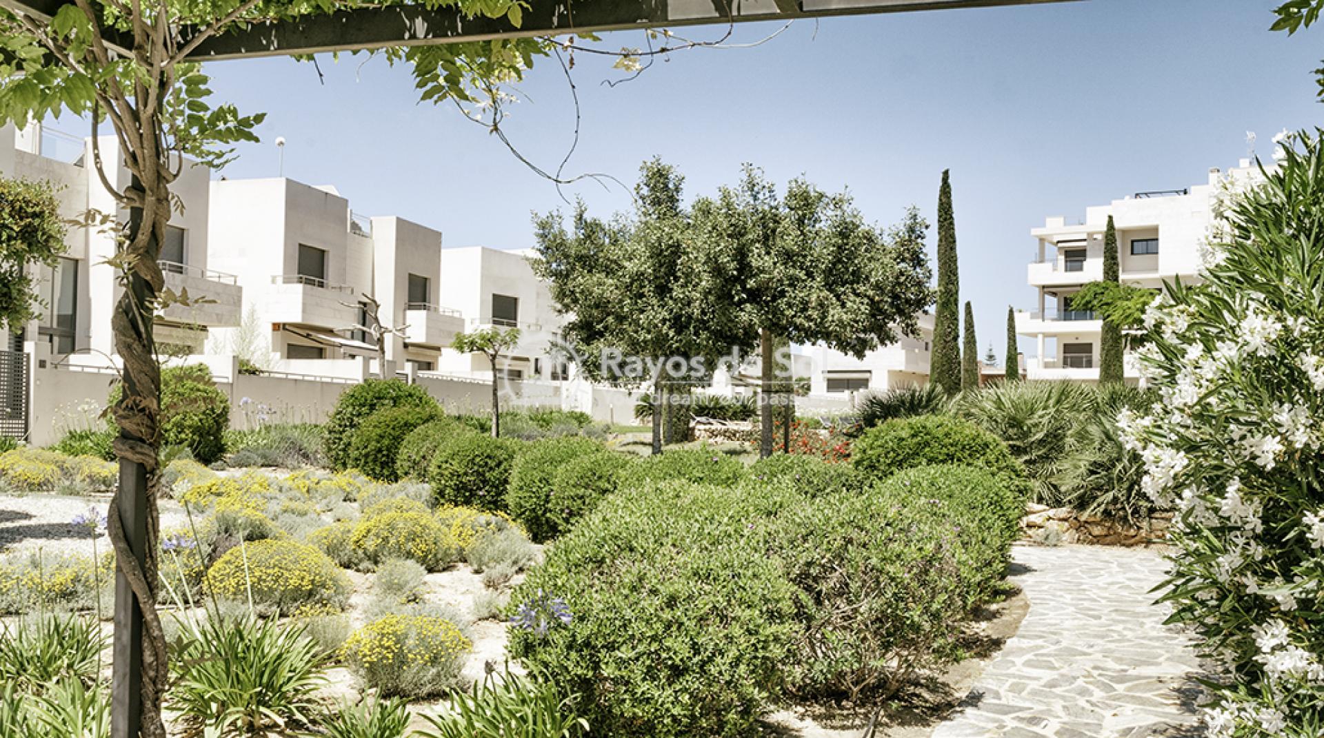 Apartment  in Los Dolses, Orihuela Costa, Costa Blanca (montesolana-tipo-3d) - 33