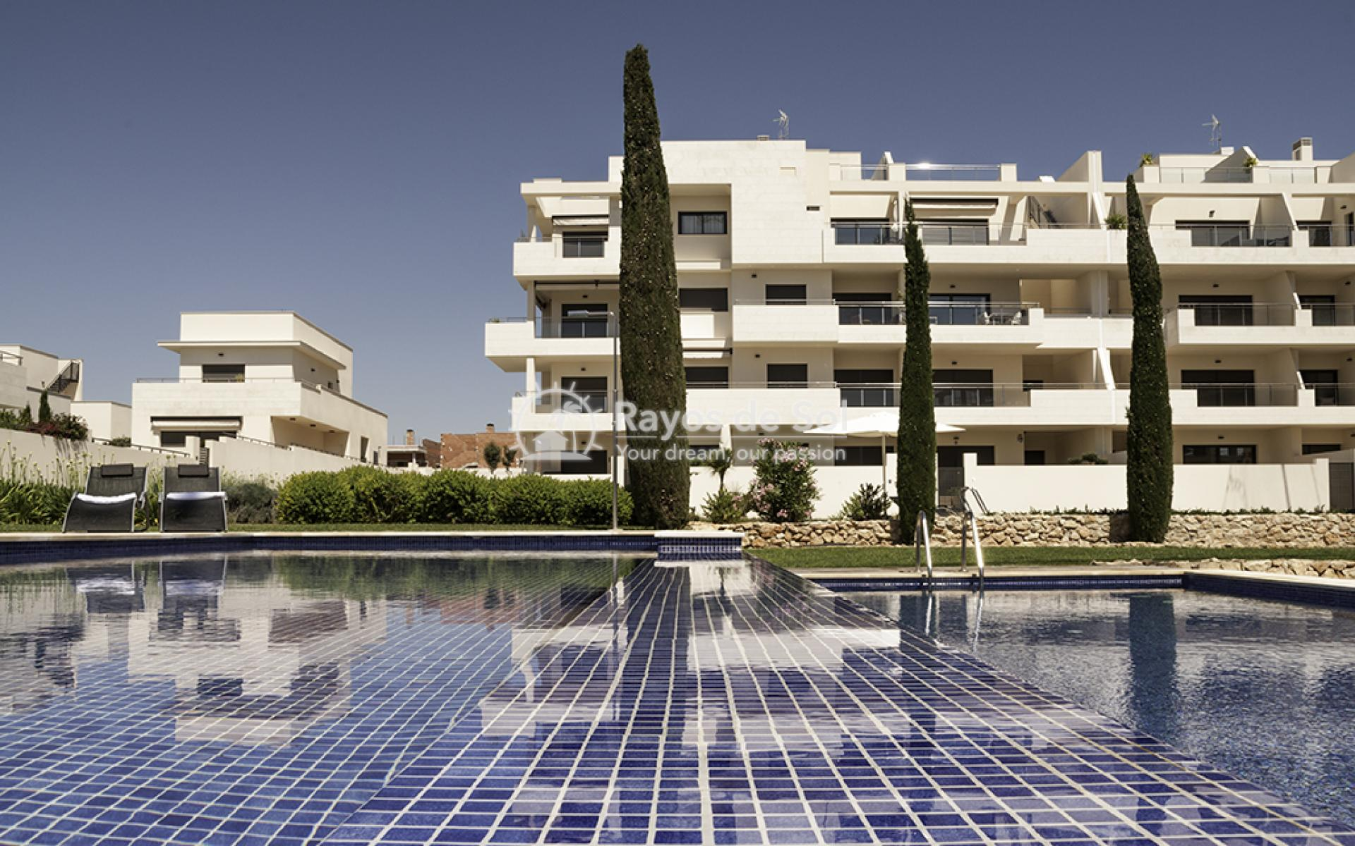 Apartment  in Los Dolses, Orihuela Costa, Costa Blanca (montesolana-tipo-3d) - 34