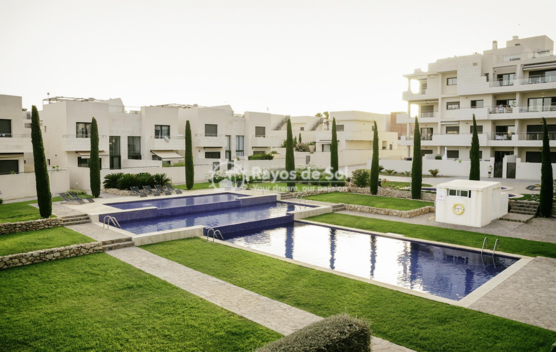 Apartment  in Los Dolses, Orihuela Costa, Costa Blanca (montesolana-tipo-3d) - 35